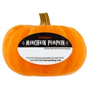 Sainsbury's Munchkin Pumpkin