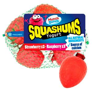 Munch Bunch Seasonal Squashums Yogurt 6x60g