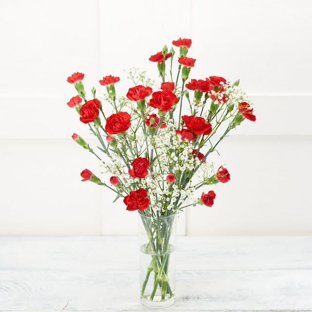 Pretty Spray Carnations Sainsbury S