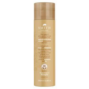 Smith England Gloss Shine Expert Shampoo 250ml