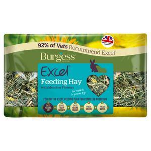 Burgess Excel Feeding Hay with Meadow Flowers 500g